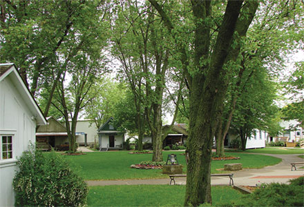 Cabins Village Green