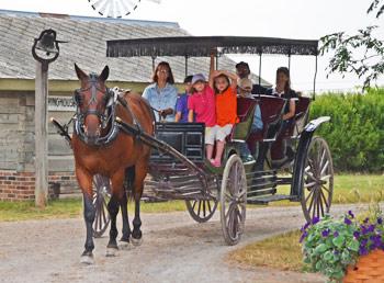 Buggy-Ride-in-Village
