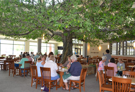 "Buffet under the ""Great Oak Tree"""